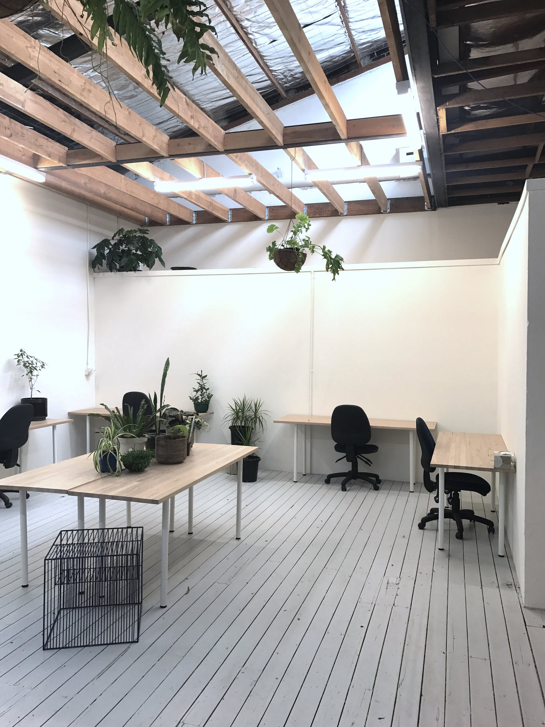 Minimalist office space located in Collingwood, image 1