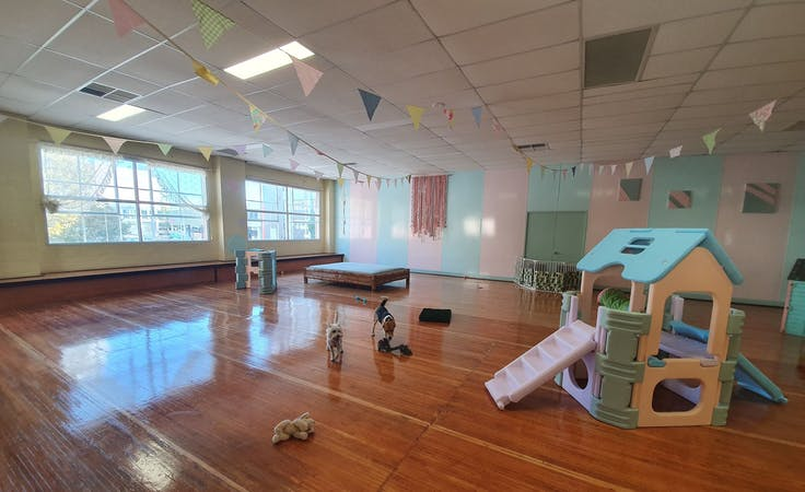 Photographic Venue, creative studio at Madame Ma's Doggie Daycare, image 1
