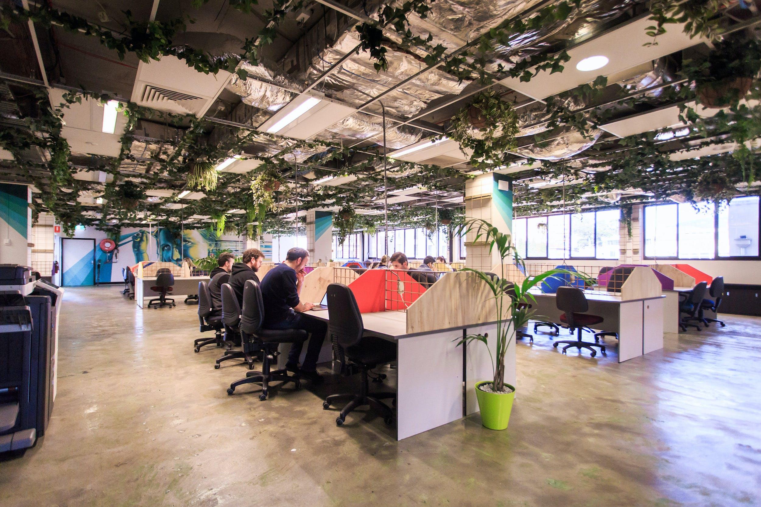 Dedicated desk at WOTSO Hobart, image 2