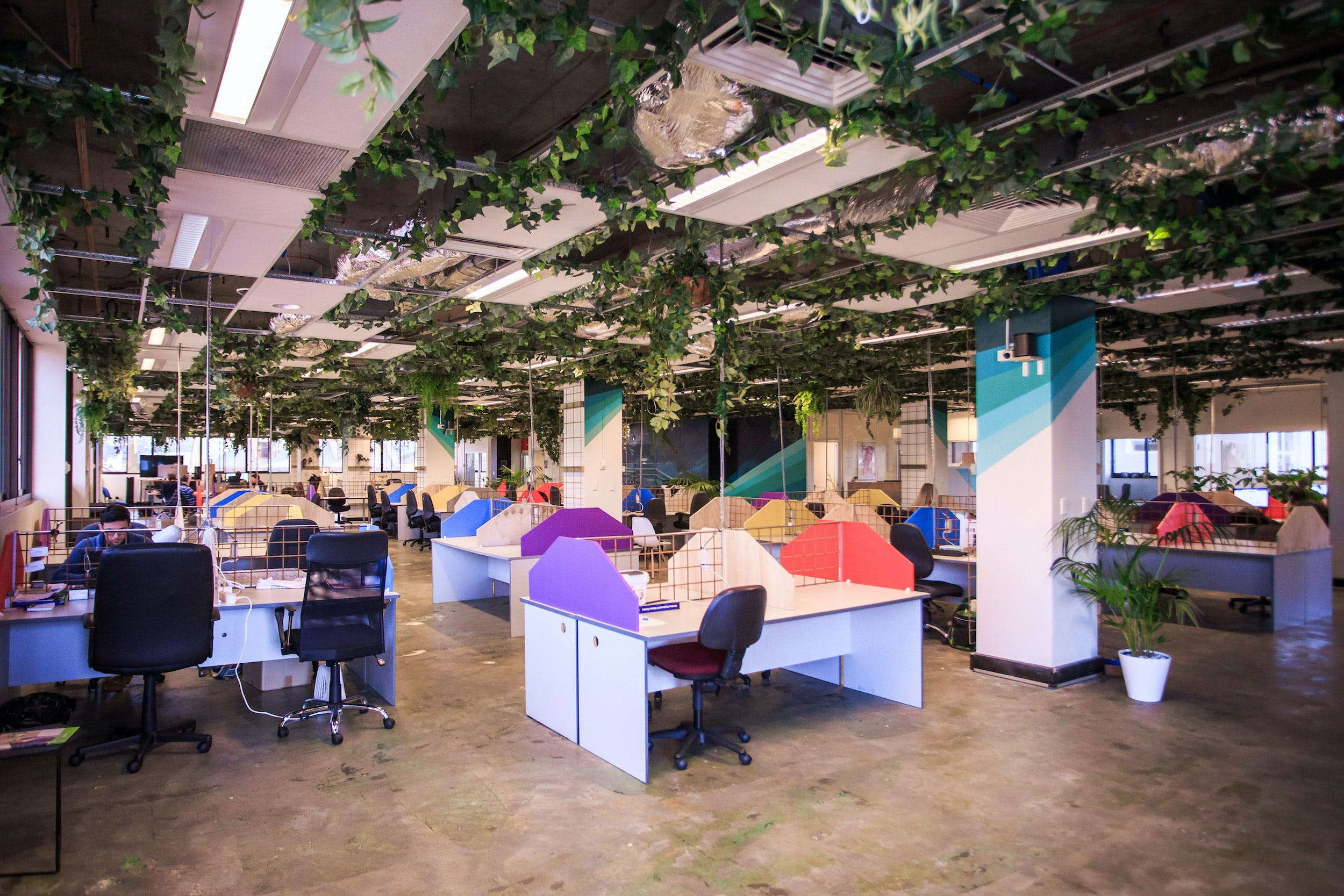 Dedicated desk at WOTSO Hobart, image 1