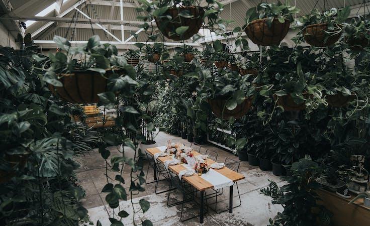 Botanicah, multi-use area at Botanicah, image 1