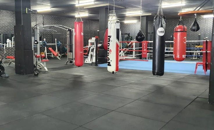 Weights & Cardio. Boxing ring & boxing Bags, multi-use area at Darkside Gym, image 1