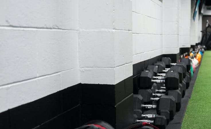 Strength & Movement Gym, multi-use area at Body Fit Training Newstead, image 5