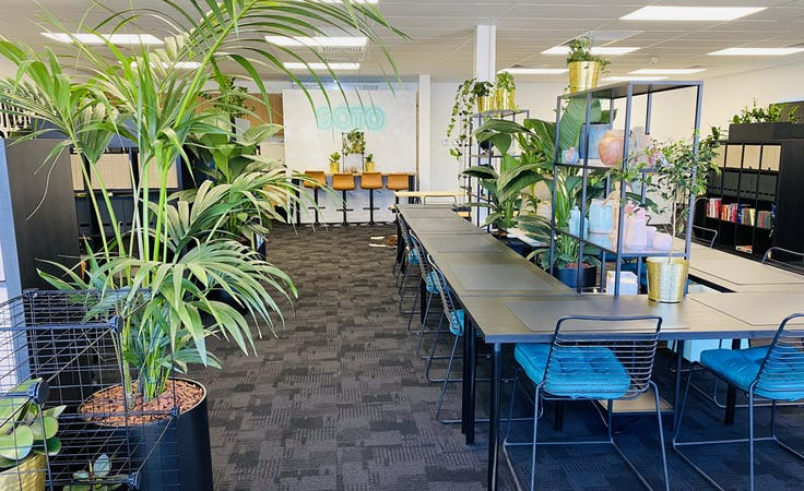 SOTO Central Coworking, coworking at Soto Co - Leafy Green Semi Private Coworking Pods & Desks, image 6