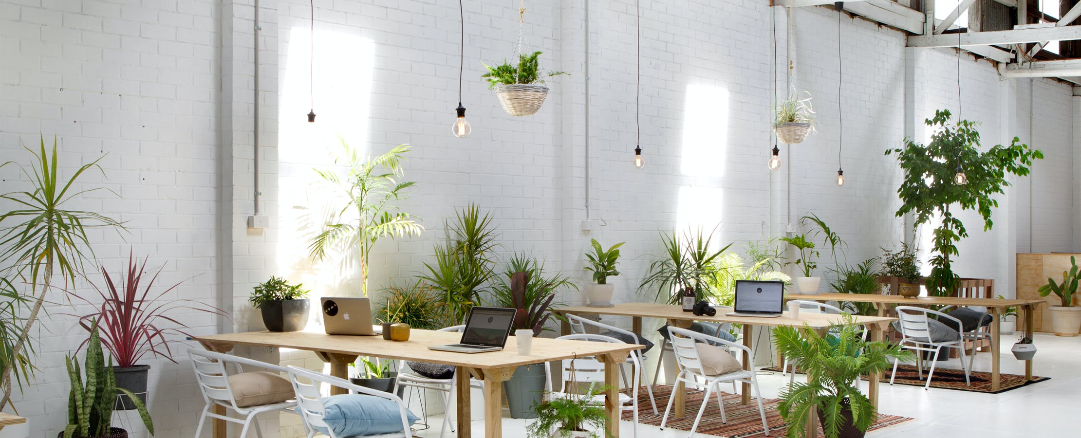 Coworking at Cleaver Street & Co. Studio, image 1