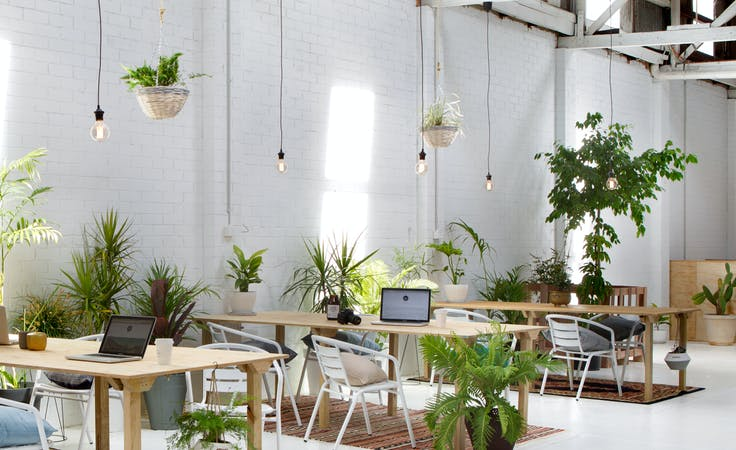 Bright and vibrant co-working space in West Perth, image 1