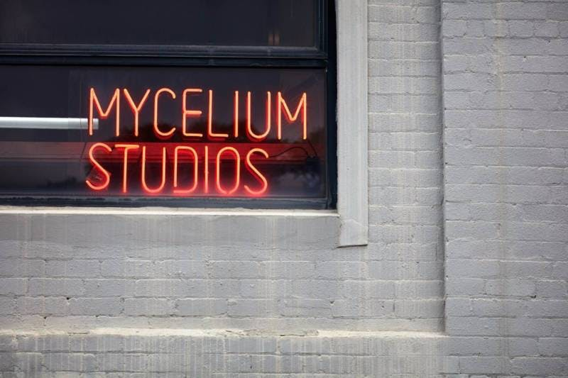 Dedicated desk at Mycelium Studios, image 8