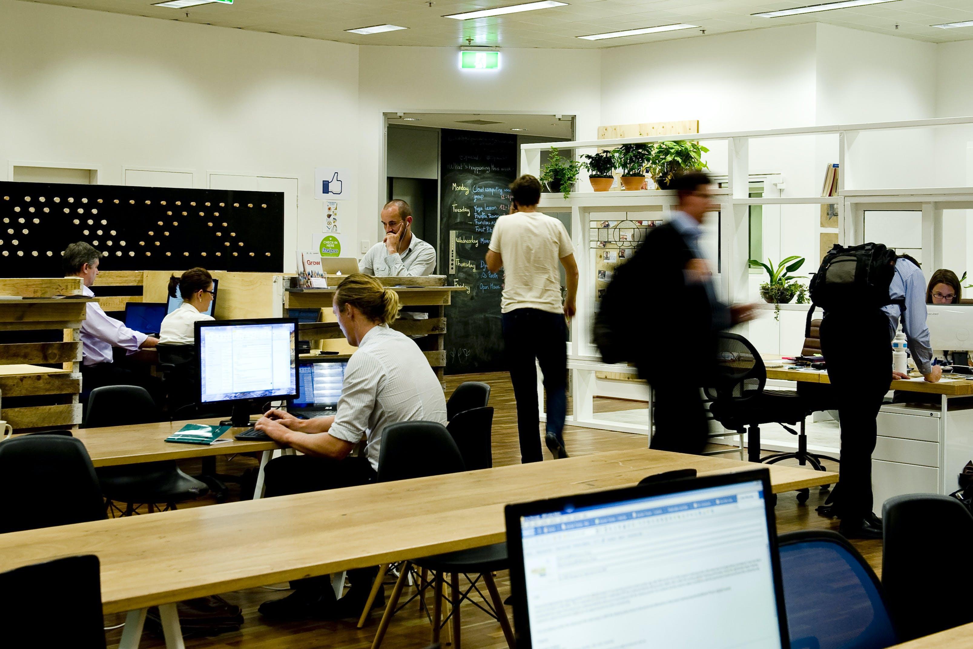 Coworking at Spacecubed, image 1