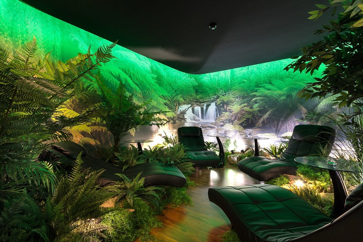 Private office? Indoor jungle? Work your way at 66 Victor Crescent , image 1