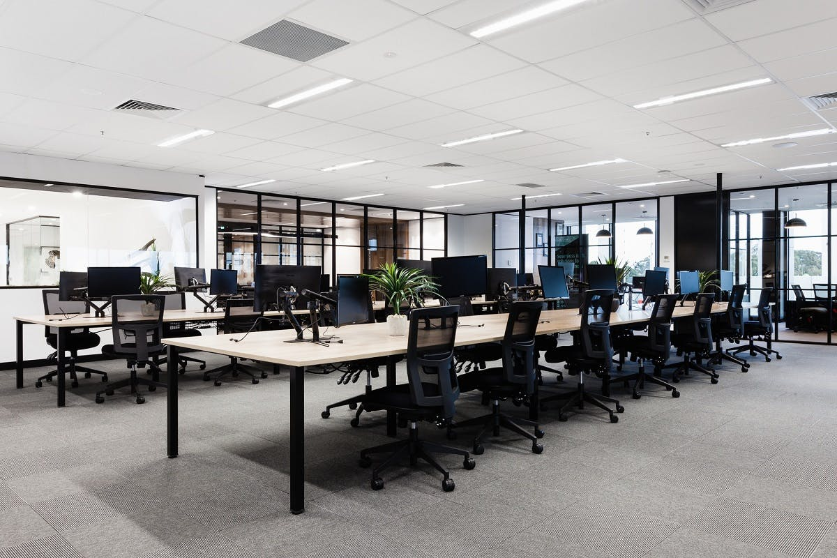 Coworking at 66 Victor Crescent, image 3