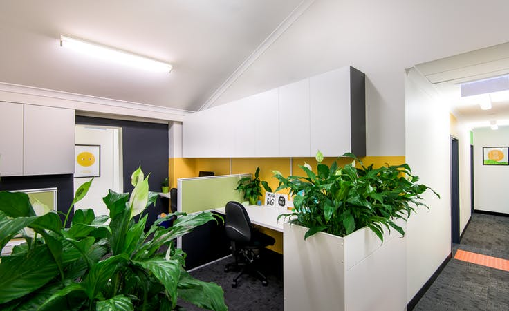 Large Therapy Room / Children's Gym Room, multi-use area at AIM Occupational Therapy, image 4