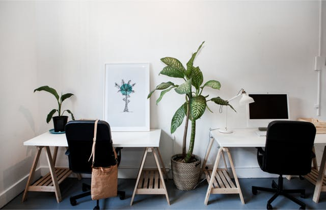 Coworking at Creative Studio, image 1