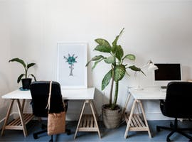 Co-working in a light-filled space in Manly, image 1