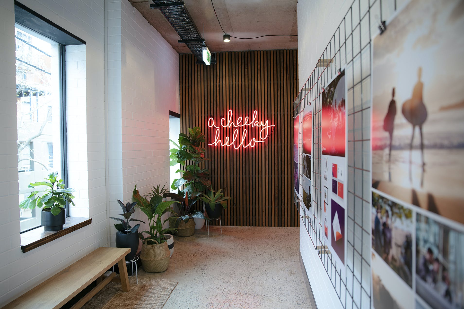 Dedicated desk at Chello Agency, image 1