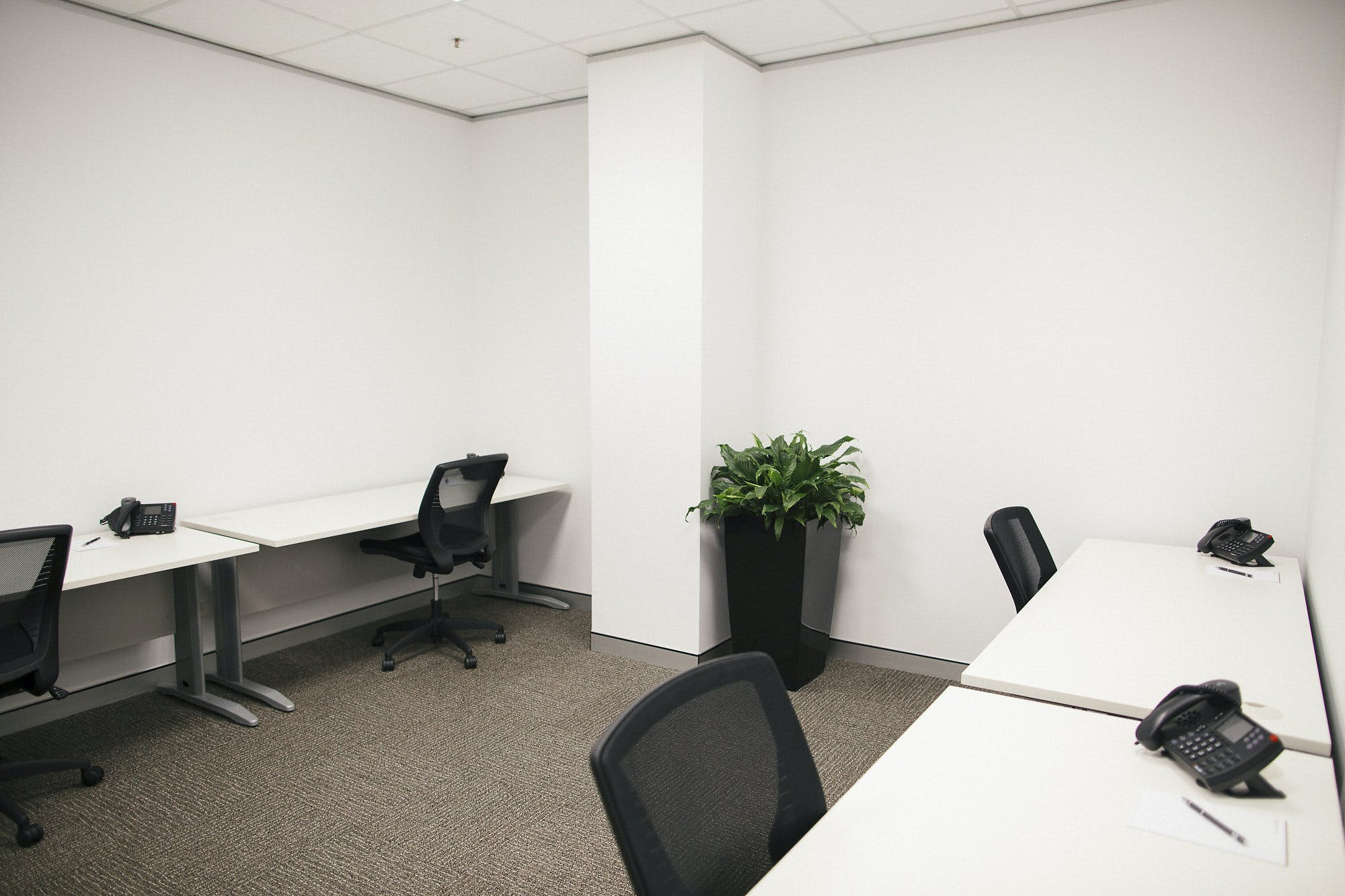 4 Person Office, private office at Darwin Innovation Hub, image 1