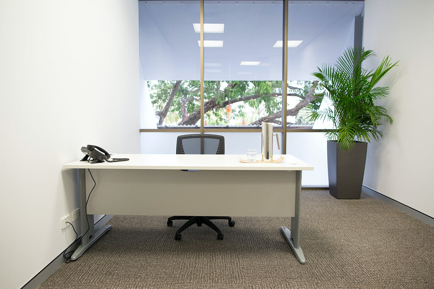 2 -3 Person Office, private office at Darwin Innovation Hub, image 1