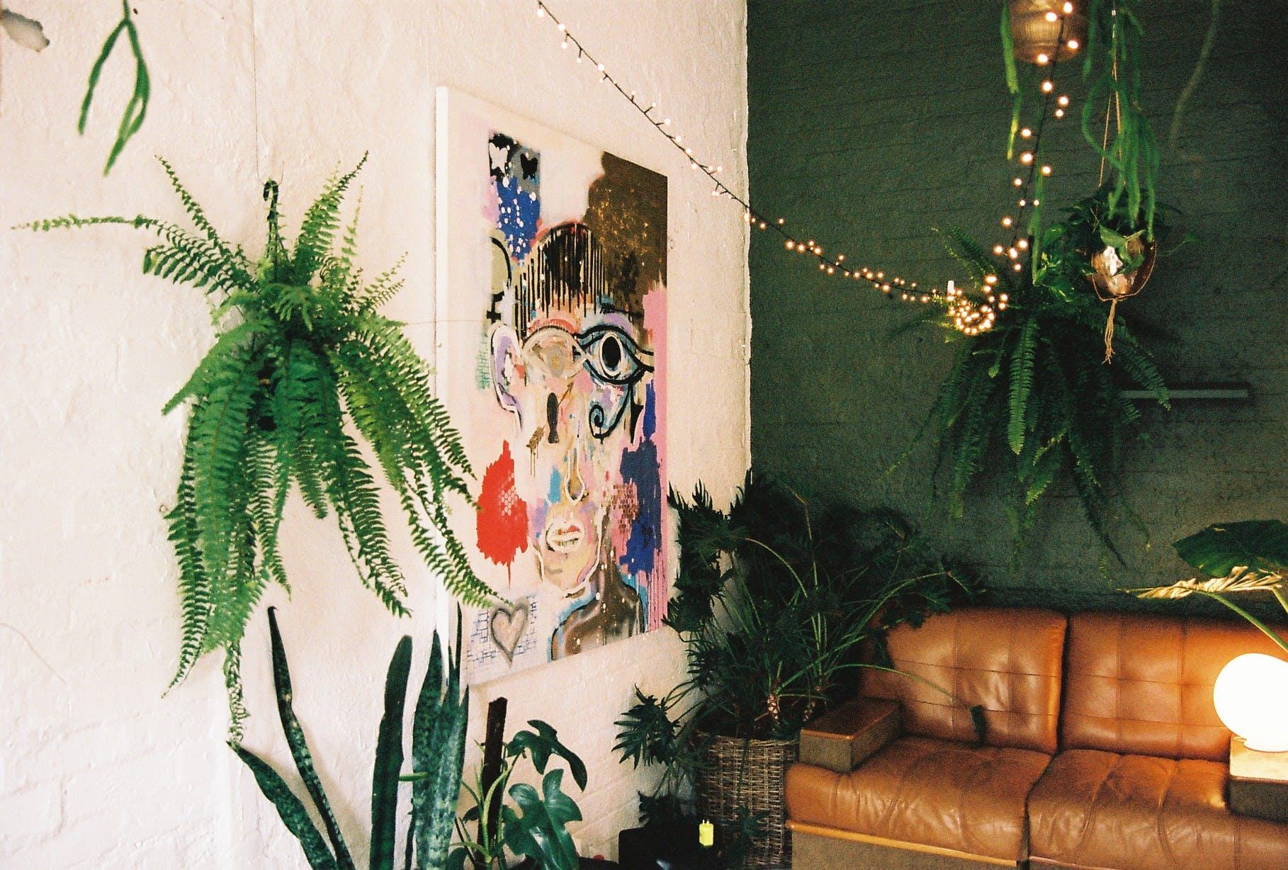 Collingwood Plant Studio, multi-use area at Jenna Holmes, image 2