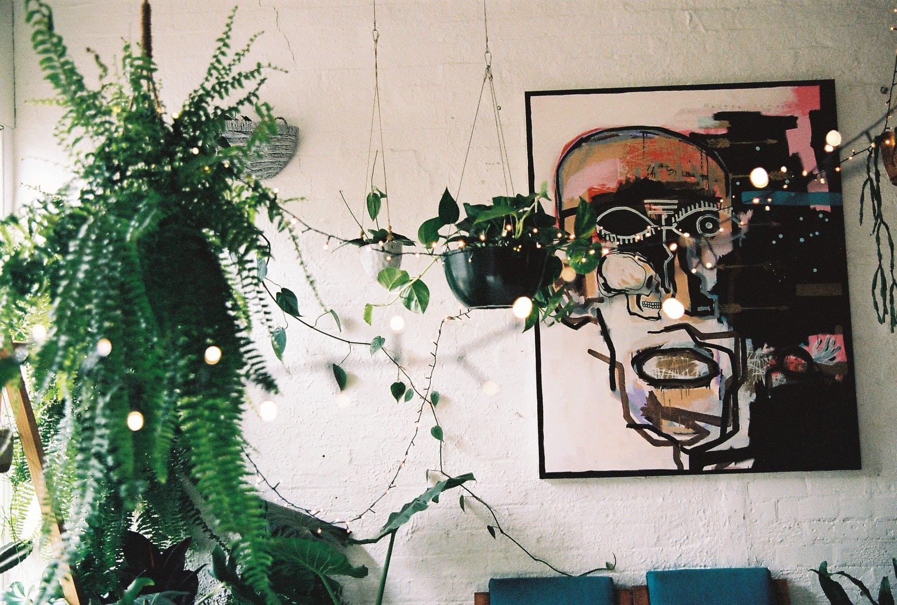 Collingwood Plant Studio, multi-use area at Jenna Holmes, image 1