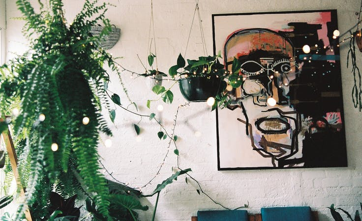 A Collingwood plant oasis to make your own, image 1