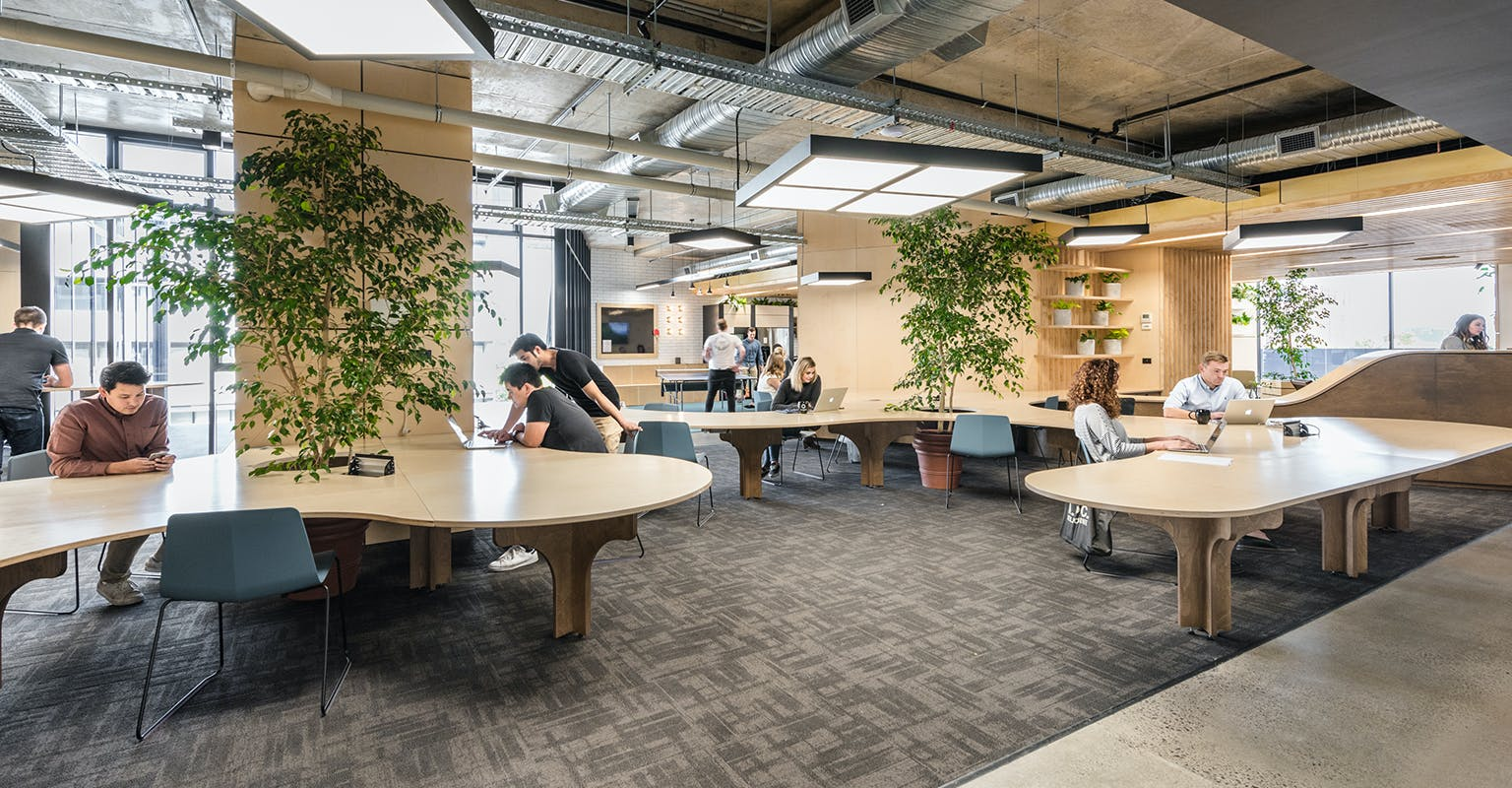 Coworking at The Commons South Melbourne, image 2