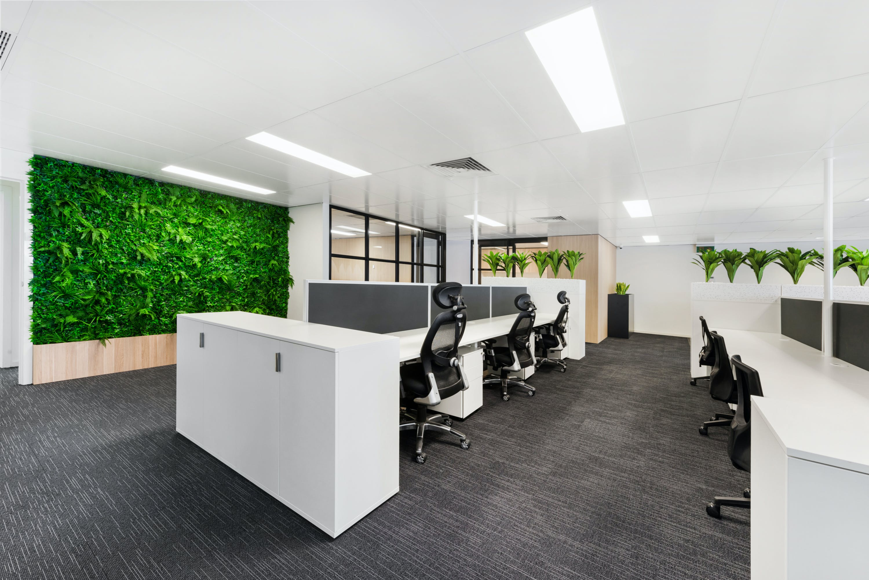 Shared office at Fabretto Group, image 1
