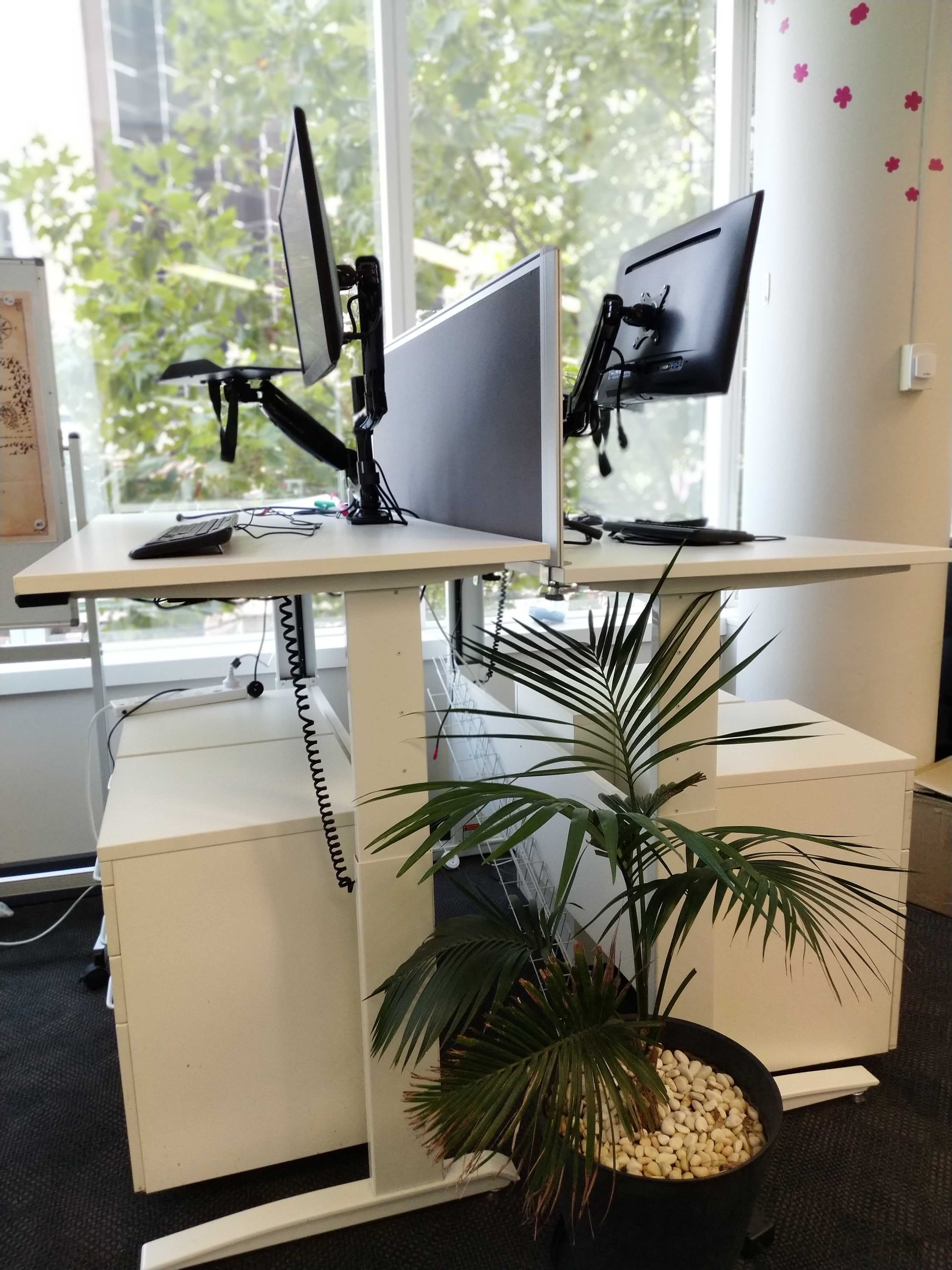 Standing Desks - Permanant, dedicated desk at 2 Elizabeth Plaza, image 1