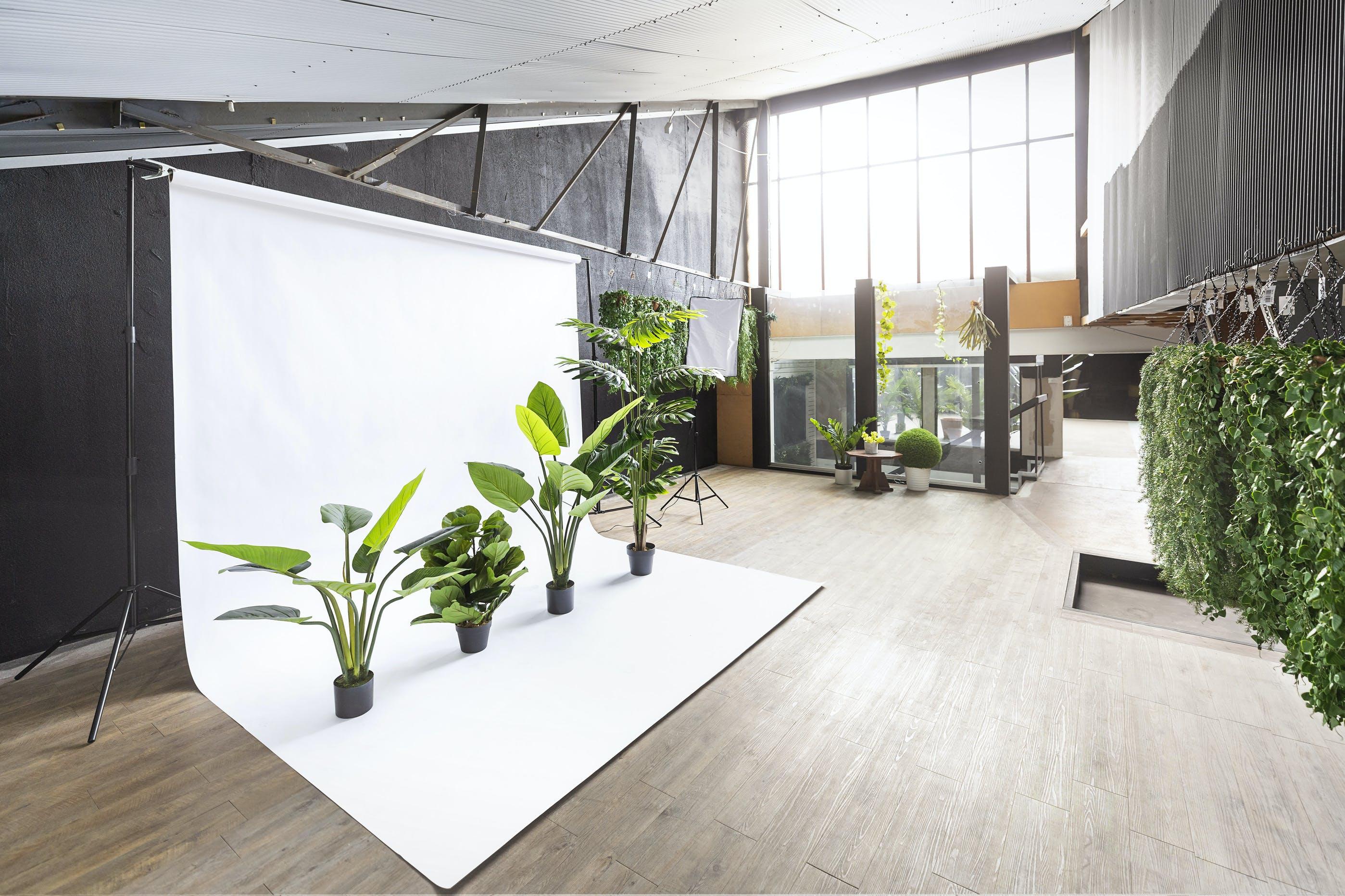 1st Floor Studio 1, creative studio at Garden Beet, image 1