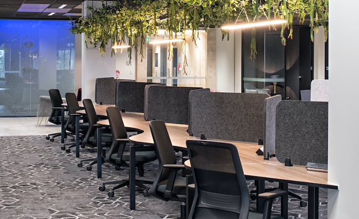 Office 8, serviced office at Victory Offices | St Kilda, image 2