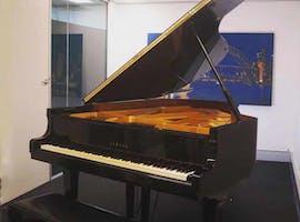 Room Shostakovich - Music Room at Hub Bravissimo, image 1